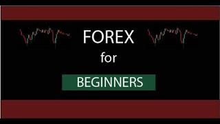 Forex For Beginners   Currency Strength